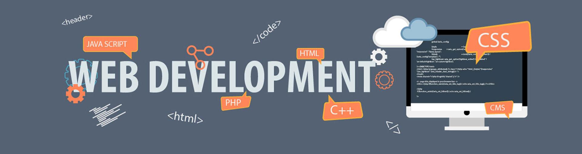 Website Development Company India, Web Development Services |